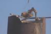 Μεγάλα μηχανήματα που έφεραν την καταστροφή! (video)