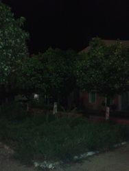 Τις νύχτες της Άνοιξης μοσχοβολούν οι νεραντζιές της Τριών Ναυάρχων (pics)
