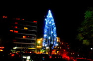 Πάτρα: Το δέντρο στα Ψηλαλώνια ντύθηκε, στολίστηκε και φωτίζει την πλατεία (pics)
