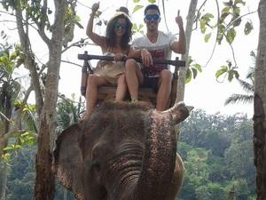 Γαμήλιο ταξίδι για Πατρινό ζευγάρι πάνω σε... έναν ελέφαντα! (Δείτε φωτο)