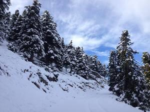 Άσπρισαν τα πάντα στα Καλάβρυτα - Ένα πανέμορφο ορεινό τοπίο και φέτος (pics)