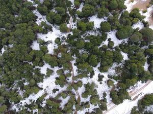 Εναέριο ταξίδι πάνω από την παγωμένη Καλόγρια και την Στροφυλιά (pics+vids)