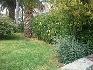 Η πιο πράσινη, 24ωρη πλατεία της Πάτρας!