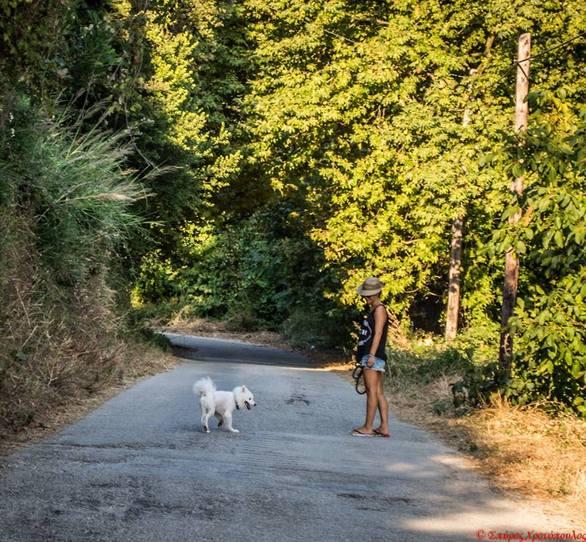"""Στα 3 χλμ. από την Πάτρα """"πέφτεις"""" σε παράδεισο... (Δείτε φωτο)"""