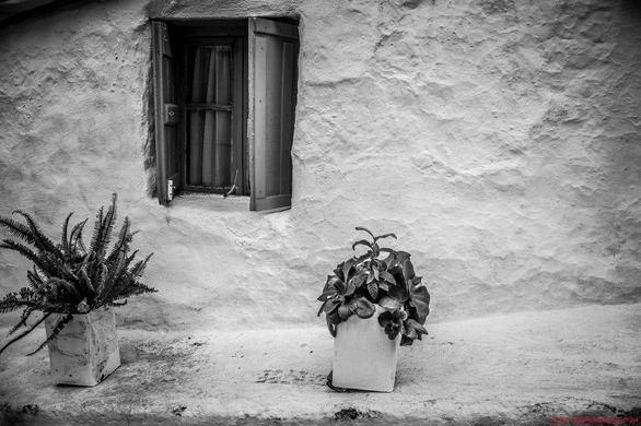 Πάτρα: Οι Patrinistas βόλταραν... γύρω από το Κάστρο! (pics)