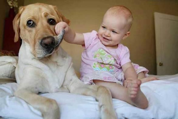 Παιδιά και... κατοικίδια: 10 θετικοί λόγοι για να μεγαλώσουν μαζί (pics)