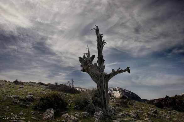 """Πατρινοί """"απέδρασαν"""" στην Φλαμπουρίτσα - Δείτε μαγικές φωτογραφίες"""