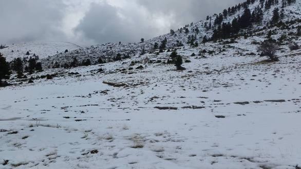 Στα λευκά τα Καλάβρυτα - Δείτε φωτογραφίες από το χιονοδρομικό!