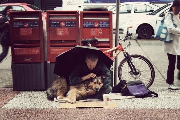 Οι σκύλοι θα μείνουν μαζί σου ακόμη και στα δύσκολα! (pics)