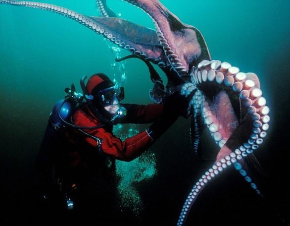 Ο τρομακτικός κόσμος του ωκεανού (pics)