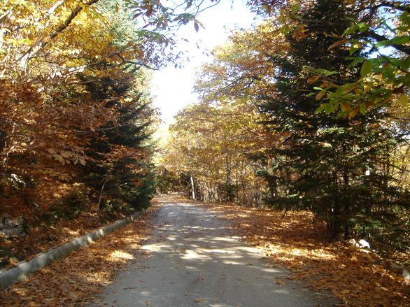 Φθινοπωρινοί προορισμοί κοντά από την Πάτρα για όσους δεν πρόλαβαν να κάνουν διακοπές! (pics)