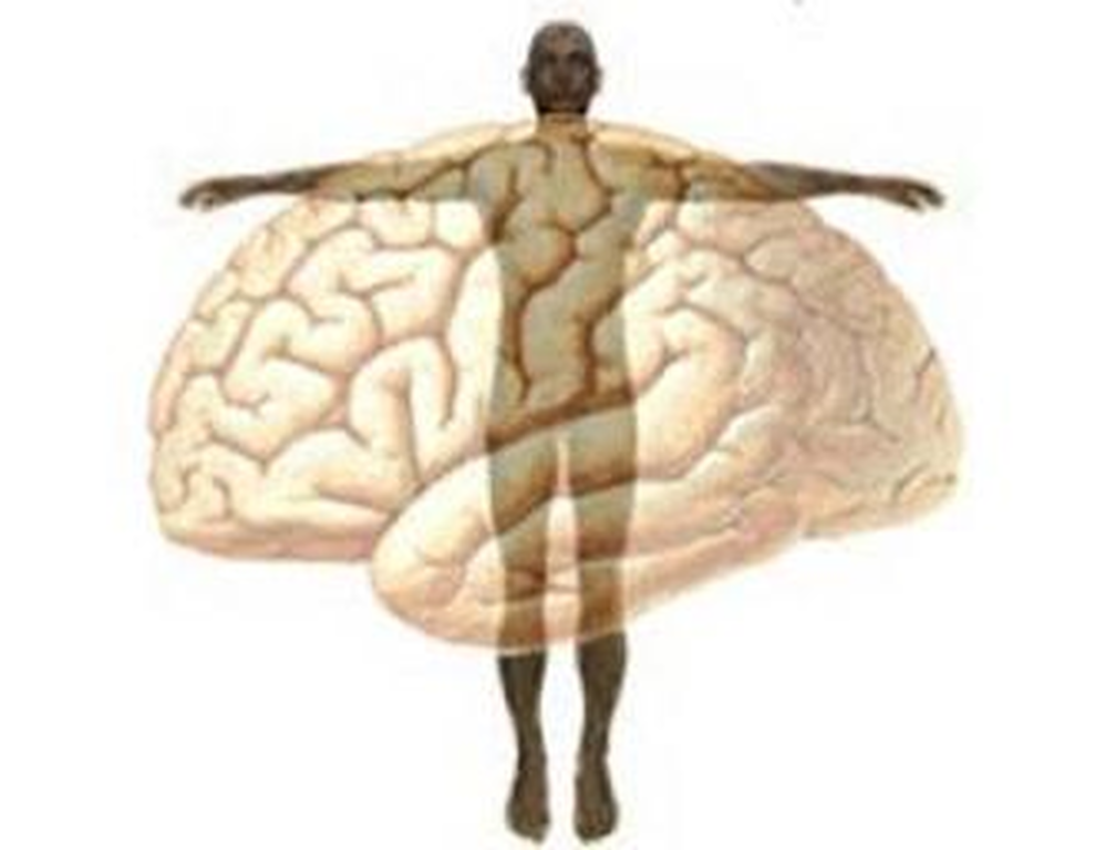 un cervello sovrapposto ad un corpo