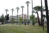 Πάτρα: Η Οικολογική Κίνηση καθαρίζει το πάρκο του Σκαγιοπουλείου