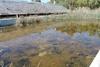 Πάτρα: Το πρώην κολυμβητήριο της Αγυιάς έχει μετατραπεί σε σκουπιδότοπο - Έριξαν και μπάζα στη πισίνα!