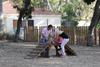 Πάτρα: Διαδικτυακό ψήφισμα για να φτιαχτεί πάρκο για σκύλους στο κέντρο