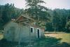 Αχαΐα - Το «σιωπηλό» θαύμα της φύσης στο δάσος της Φτέρης