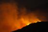 Αχαΐα: Φωτιά στο δάσος του Κούμπερη, στον Ερύμανθο