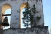 Αχαΐα: Το κυπαρίσσι που φύτρωσε πάνω στο καμπαναριό της εκκλησίας! (pics)