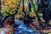 Πλανητέρο Αχαΐας - Ένας πανέμορφος πλανήτης νερού και πλατάνων (pics)