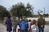 Πάτρα: Μάζεψαν ελιές στο 18ο Δημοτικό Σχολείο (pics)