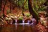 Ερύμανθος ποταμός - Το φυσικό σύνορο της Πελοποννήσου (pics)