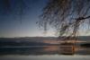 Οδοιπορικό στον όμορφο κόσμο της λίμνης Τριχωνίδας! (video)
