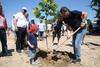Οι Πατρινοί φύτεψαν δέντρα στο Πλατανόδασος, συμβάλλοντας στη βελτίωση της εικόνας του (φωτο)