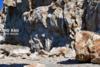 Έβρεξε… βράχια στο Ναύπλιο (pics+video)