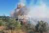 Ηλεία: Μεγάλη πυρκαγιά σε δασική έκταση στην Κορυφή