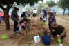 ΠΑ.Κ.Ο.Ε.: Δημιουργία λαχανόκηπου στο 6ο Δημοτικό σχολείο Αγίων Αναργύρων