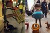 Ο ακορντεονίστας της Ρήγα Φεραίου έγινε φιγούρα playmobil και 'επέστρεψε' στην Πάτρα παραμονή Πρωτοχρονιάς! (φωτο)
