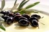 ΕΦΕΤ - Ενημέρωση των καταναλωτών για την επιτραπέζια ελιά