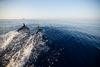 WWF: Η προστασία των θαλάσσιων θηλαστικών στην Ελλάδα (φωτο)