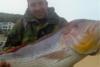 Ψαράς στη Χίο έπιασε συναγρίδα 15,5 κιλών (φωτο)
