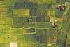 Δασικοί χάρτες - Έρχεται λύση για 700.000 αυθαίρετα