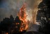Υψηλός κίνδυνος εκδήλωσης πυρκαγιάς την Κυριακή