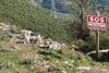 Δυτική Ελλάδα: Συγκινεί ταμπέλα που έβαλε φιλόζωος για σκυλίτσα στο Θέρμο (φωτο)