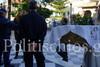Ένταση έξω από εκκλησία στη Χίο (video)