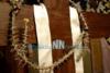 Φωκίδα: Άνθησε μετά από ένα μήνα το Ακάνθινο Στεφάνι του Εσταυρωμένου (video)