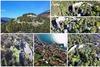 Το βενετσιάνικο κάστρο της Ναυπάκτου, ένα από τα ωραιότερα της Ευρώπης (video)
