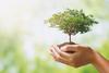 Πανελλαδική δράση ευαισθητοποίησης για το περιβάλλον και την αειφορία