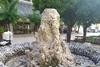 Πάτρα: Το συντριβάνι της Τριών Ναυάρχων που παραμένει χειμώνα - καλοκαίρι «στείρο»!