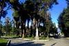 Κήπος των Ηρώων - Το ιστορικό μνημείο του Μεσολογγίου που καθηλώνει (video)