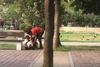 Πάτρα: Άγρια σκηνικά με ναρκομανείς στα παγκάκια των Υψηλών Αλωνίων και της Τριών Ναυάρχων