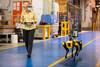 Η Ford κατασκευάζει ρομπότ με τεχνητή νοημοσύνη (φωτο)