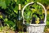 Ιταλικό κρασί: Η νέα παραγωγή μειώθηκε κατά 5%