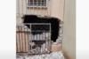 Γκράβα: Γκρέμισαν τον τοίχο για να διαρρήξουν το κυλικείο του σχολείου! (video)