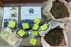 Αχαΐα: Κατασχέθηκαν περισσότερα από 1.300 γραμμάρια κάνναβης (φωτο)