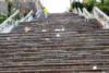 Πάτρα: Συνεργεία του Δήμου καθάρισαν τις σκάλες της Αγ. Νικολάου - Γέμισαν δεκάδες σακούλες απορριμμάτων