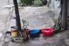 Ψάρι κάνει μια απρόσμενα επιτυχή απόδραση (video)